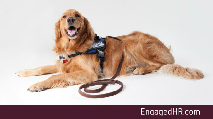 Accommodating Service Animals In The Workplace