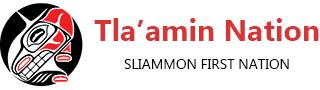 Tlamin logo